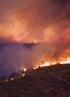Wildfire season is here: Do you know when to close your patio?